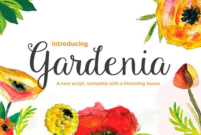 Fuente Gardenia Script